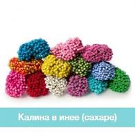 Калина в инее (сахаре)