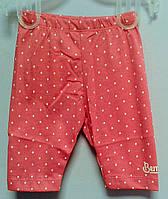 Штаны для девочек 80 см ШР371 (80) Бэмби Украина