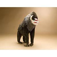 Мягкая игрушка Hansa Обезьяна-Мандрил 75cm 3625, фото 1