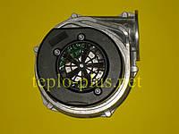 Вентилятор 8717204529 Junkers CerapurComfort ZBR42-3 A, ZWBR35-3 A, Bosch Condens 7000 W ZBR42-3 A, ZWBR35-3 A, фото 1