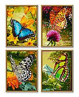 """Художественный творческий набор """"Красочные бабочки"""". Картины по номерам Schipper 934 0628"""