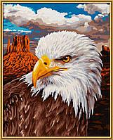 """Художественный творческий набор """"Белый Орел"""". Картины по номерам Schipper 924 0665"""