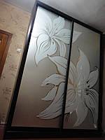 Шкаф-купе с рисунком на зеркале в глянцевом профиле венге