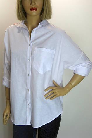 Жіноча вишита блузка-сорочка Berin, фото 2
