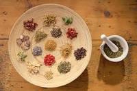 Лечение гинекологических заболеваний травами