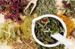 Лечение цистита травами