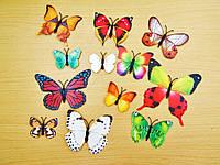 3D стикер декаль наклейка для стены Бабочки, стікер Метелики СМ3