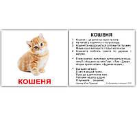 «Свійські тварини з фактами» МІНІ 40, Вундеркинд  с пеленок, карты Домана на украинском