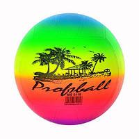 Мяч волейбольный детский Profi