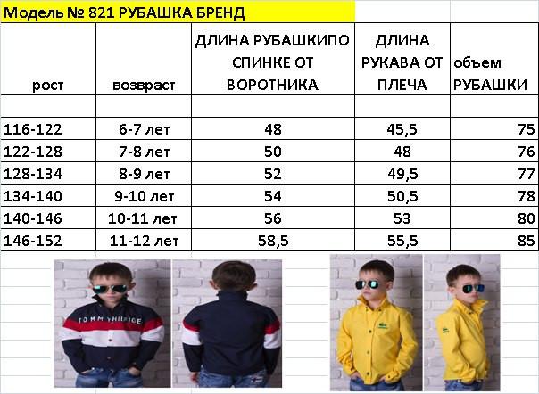 2e11d1e7c35 Стильная рубашка на мальчика Lacoste № 828 е.в. Ткань - превосходный  рубашечный турецкий коттон (98% коттон)