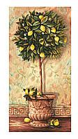 """Художественный творческий набор """"Лимонное дерево"""". Картины по номерам Schipper 922 0397"""