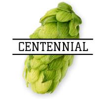 Хмель Centennial (US) 2018г - 50г