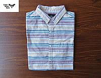 Классная и красивая мужская тенниска / рубашка Cedar Wood State (S)