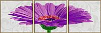 """Художественный творческий набор-триптих """"Гербера Джемсона фиолетовая"""". Картины по номерам Schipper 940 0683"""