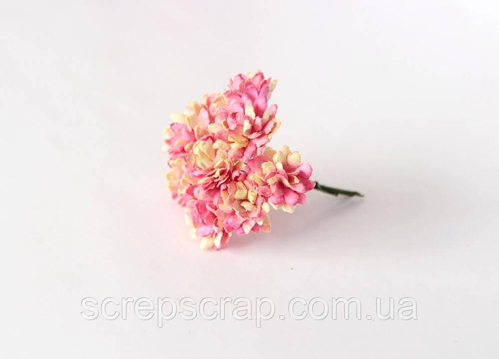 """Цветы """"Астра"""" Поштучно"""