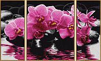 """Художественный творческий набор-триптих """"Орхидеи"""". Картины по номерам Schipper 926 0603"""
