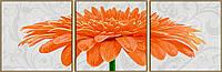 """Художественный творческий набор-триптих """"Хризантема оранжевая"""". Картины по номерам Schipper 940 0684"""