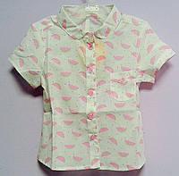 Блуза для девочек 110 см РБ73 (110) Бэмби Украина