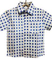 Рубашка детская на мальчика, р.92-116, голубая клетка