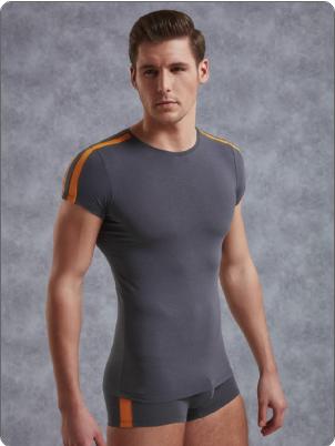 Мужская футболка Doreanse Sportive 2544 Антрацит