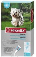 Капли Адвантикс для собак весом 4-10 кг 1шт