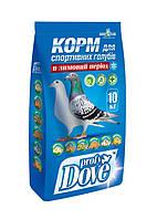 Корм для спортивных голубей в зимний период 10 кг Профи Дав