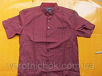 Мужская рубашка Gport - короткий рукав