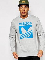 Свитшот мужской Adidas серый (люкс копия)