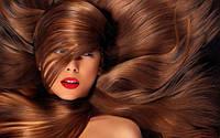 Dikson – волосы тоже хотят быть красивыми