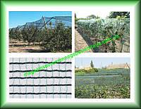 Защита от града, сетка для защиты от града DEFENDER зеленая 2х100 Италия