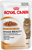 Royal Canin INTENSE BEAUTY (в желе) корм для поддержания красоты  шерсти кошек (85 г)