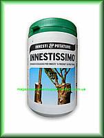 Садовая замазка, воск для деревьев, мастика для прививки плодовых деревьев INNESTISSIMO 1кг Италия