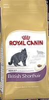 Royal Canin British Shorthair Корм для Британских короткошерстных кошек (2 кг, 4 кг, 10 кг)