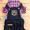 Комбинезон джинсовый с рубашкой для собаки. Одежда для собак, фото 5