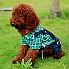 Комбинезон джинсовый с рубашкой для собаки. Одежда для собак, фото 4