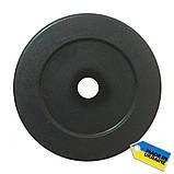 Диск тяжелоатлетический композитный Newt Rock 15 кг, фото 2