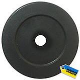 Диск тяжелоатлетический композитный Newt Rock 25 кг, фото 2