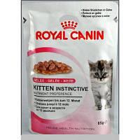 Royal Canin KITTEN INSTINCTIVE (в желе) влажный корм для котят до 12 месяцев (85 г)