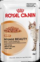 Royal Canin INTENSE BEAUTY (в соусе) корм для поддержания красоты  шерсти кошек (85 г)