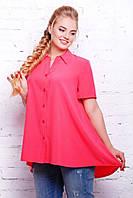 Розовая женская блуза Клио ТМ Таtiana 56-62  размеры