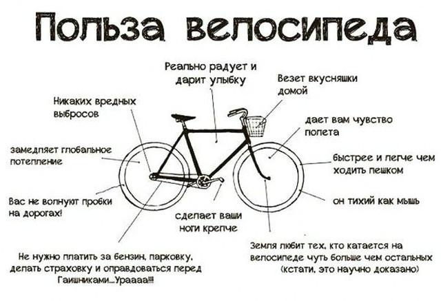 Почему велосипед?