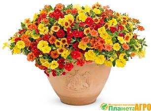 Семена цветов в профессиональной упаковке