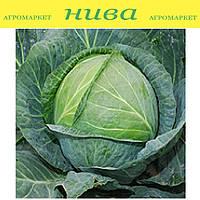 Центурион F1 семена капусты белокачанной средне-поздней Clause 2 500 семян