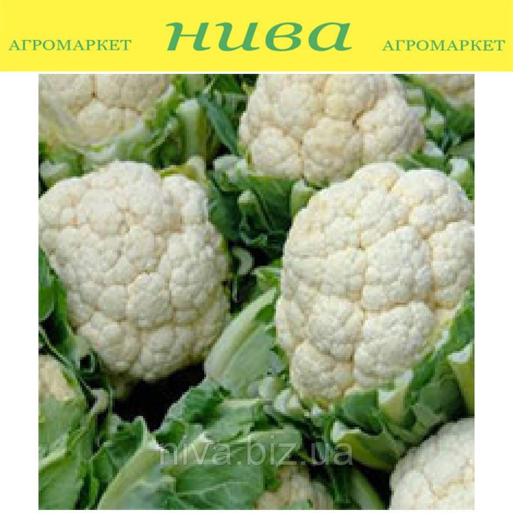 Каспер F1 (Kasper F1) семена капусты цветной поздней Rijk Zwaan 1 000 семян