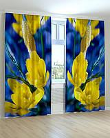 Фото шторы Желто-синие цветы