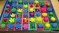"""Растишка """"Цветочки"""", разноцветные, разнообразные."""