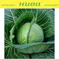 Етма насіння капусти б/к ультраранньої Rijk Zwaan 1 000 насінин