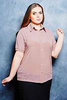 Бежевая женская рубашка Настя ТМ Таtiana 52-62 размеры