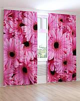 Фото шторы 3D Розовые герберы
