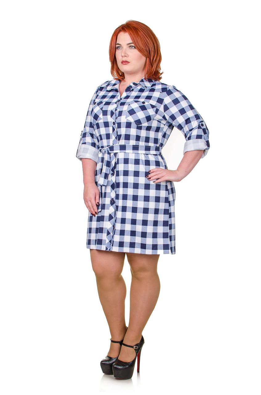 Платье-рубашка в клетку  Мари белый/синий (46-52)